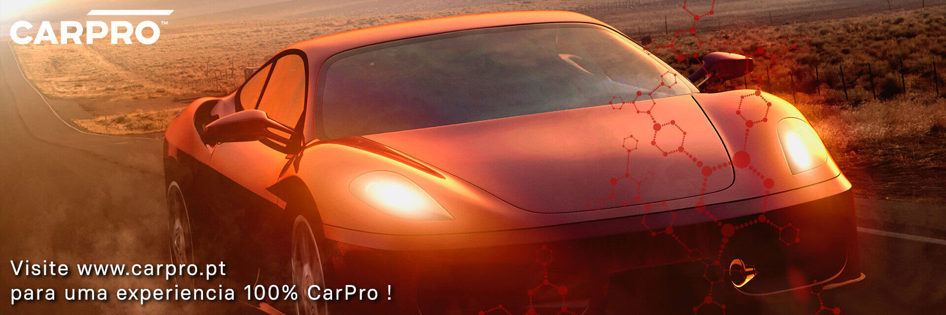 CarPro.pt